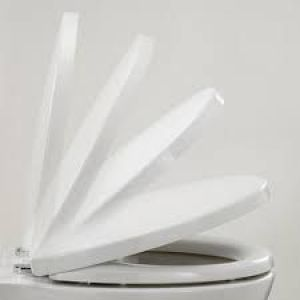 Armitage Shanks  wentworth Toilet Seat S4045 White