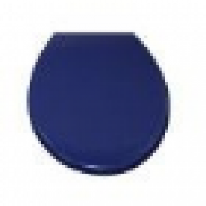 Rak Bella Care Blue Urea Toilet Seat and cover with stainless steel hinges to suit Bella Care toilet suite.