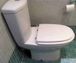 Sangra Boreal Replacement Toilet Seat & Cover Not Original but fits perfectly Colour white 02046198