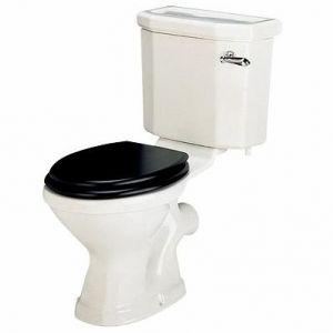 Twyford  Clarice Toilet Seat Bottom fix stainless steel hinge Black ash finish MH7811BA